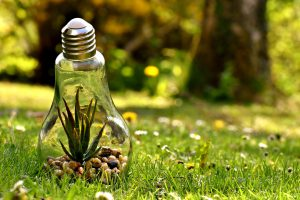 Protecting the Environment with Green Energy