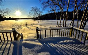 A Natural Sustainable Canadian Winter Landscape