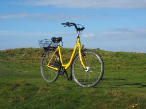 Riding a Bike to Go Places Contributes to Sustainability and the Green Movement