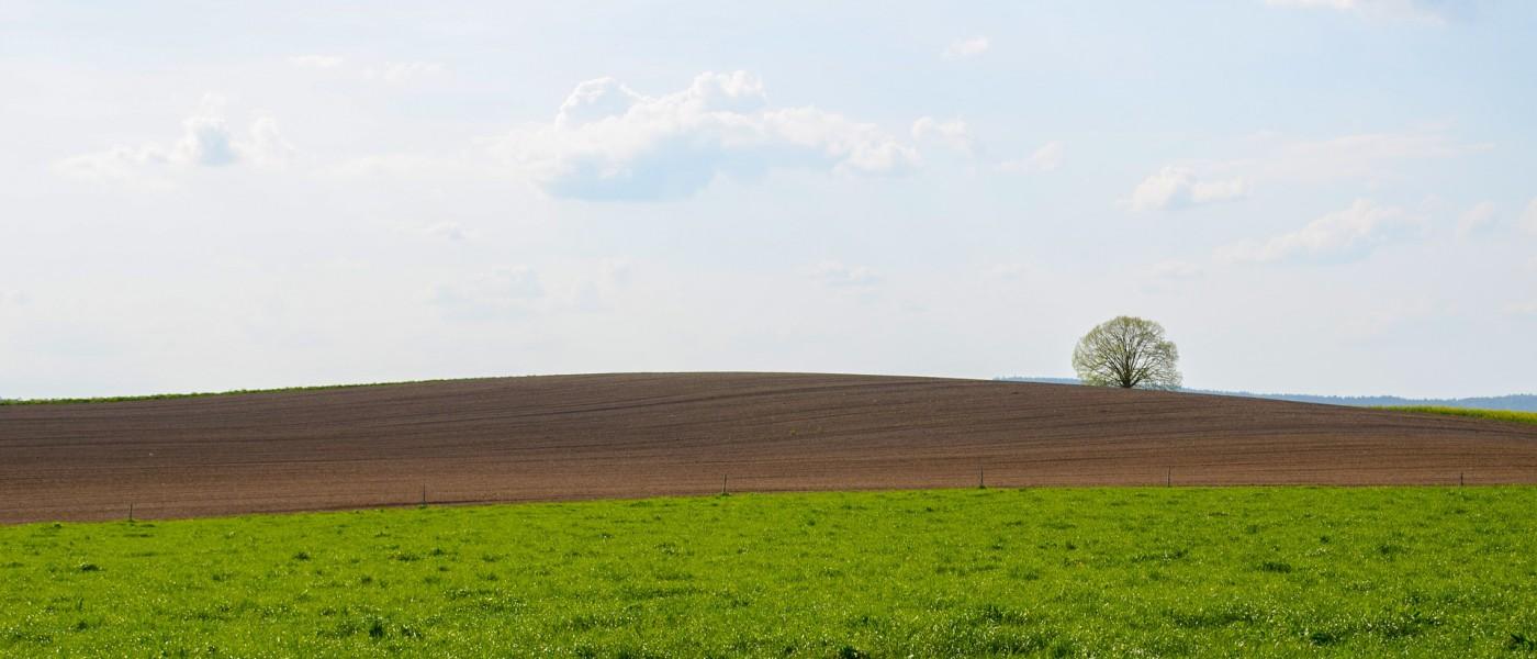A Saskatchewan Clean Green Untouched Landscape