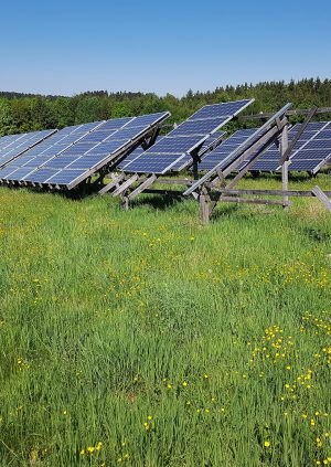 Solar Power Fields Harvesting the Energy of the Sun in Saskatchewan