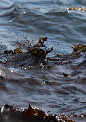 An Catastrophic Oil Spill that is Degrading the Environment