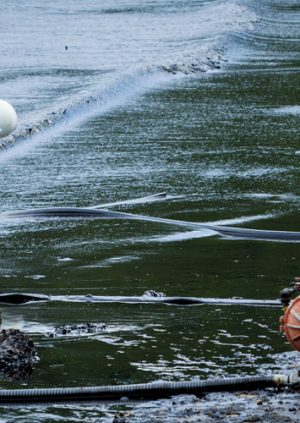 A Untouched Beach that has Fallen Prey to an Oil Spill Damaging it's Environment
